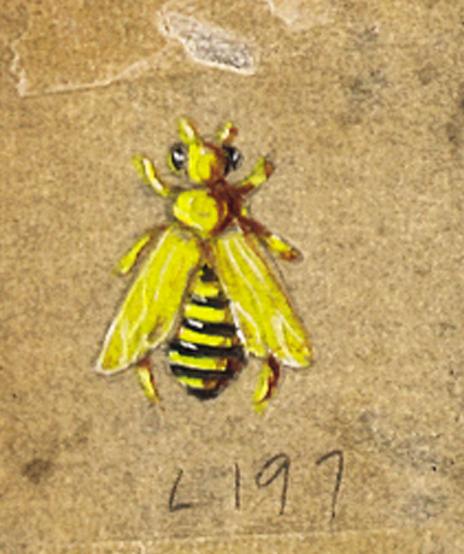 Verdura-Jewelry-Honeybee-Sketch-L1-Portrait
