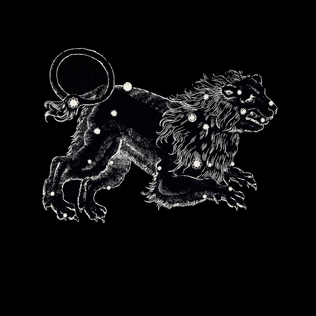Leo zodiac postcard